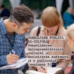 Consultare publică