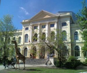 """Muzeul Naţional de Știinţe Naturale """"Grigore Antipa"""""""